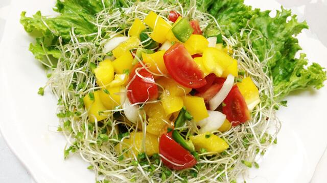 酵素たっぷりサラダレシピ~食事の最初に食べると代謝力アップ!
