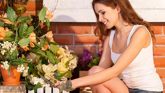 【目標実現力診断】植物を育てる