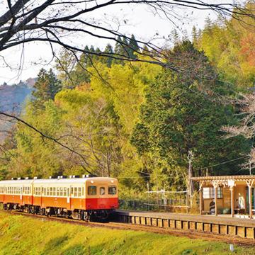 今年の紅葉はいつもと違う場所から♡電車で紅葉を楽しむスポット4選