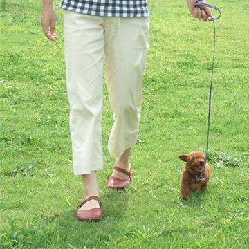 歩いて痩せる!散歩をしてみよう!散歩中の注意事項