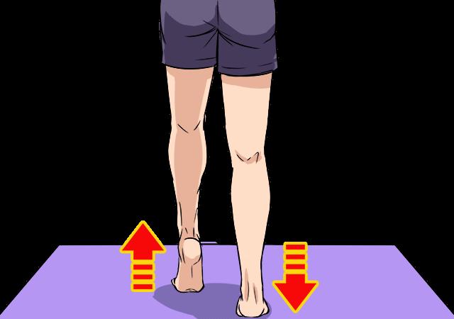 階段を使ってふくらはぎダイエット~むくみも改善してくれて脚スッキリ!_2