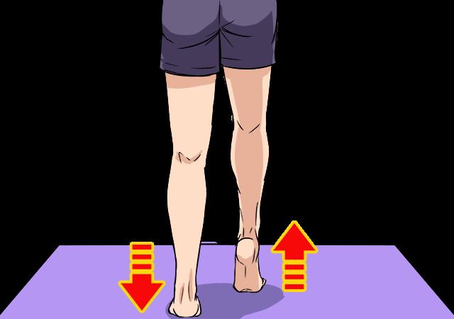 階段を使ってふくらはぎダイエット~むくみも改善してくれて脚スッキリ!_3
