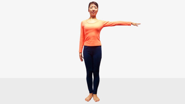 2週間ダイエット法~短期集中で二の腕をスッキリさせるエクササイズ