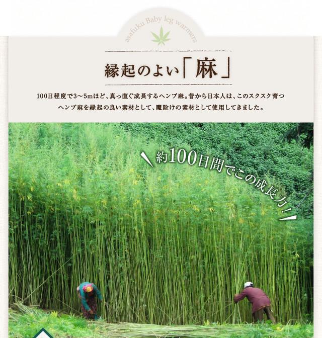 Makuake|日本伝統の麻(ヘンプ)の『お守り名刺』で良縁を!~想いを ...
