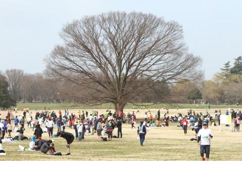 【開催中止】立川シティハーフマラソン2020【3km一般・市外小中学生】