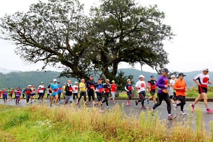 【開催中止】第41回余呉湖健康マラソン