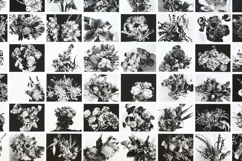 現在進行形で生まれる名作を、1000枚の写真で追う。