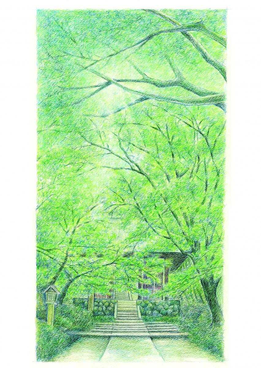 常寂光寺にて描かれる、緑とそこに息づく生命。