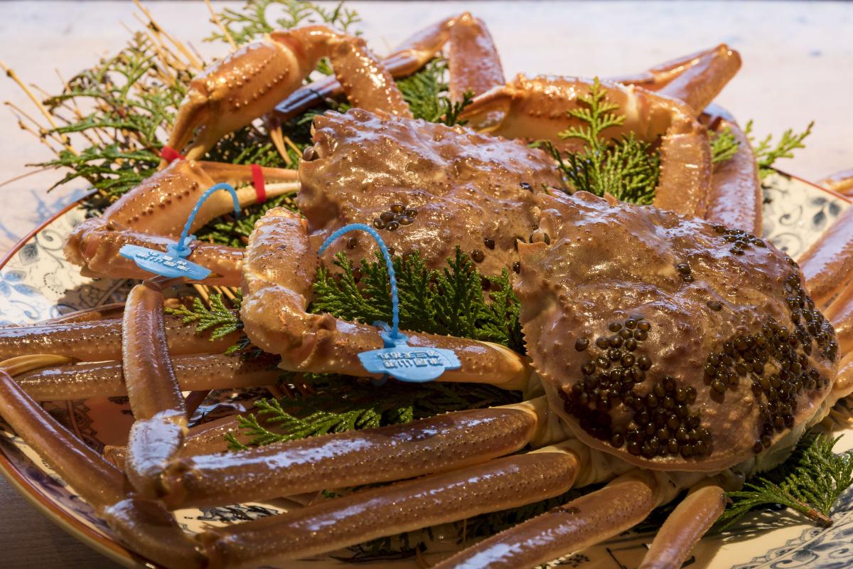 宿を目指して走り続けます。お目当てはシーズンの「津居山蟹」。