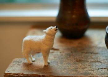 はいいろオオカミ+花屋 西別府商店―古道具と生花がつくる調和