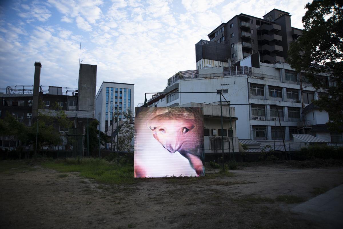 ピエール・ユイグは舞台を演出するように、「岡山芸術交流2019」をディレクションした。