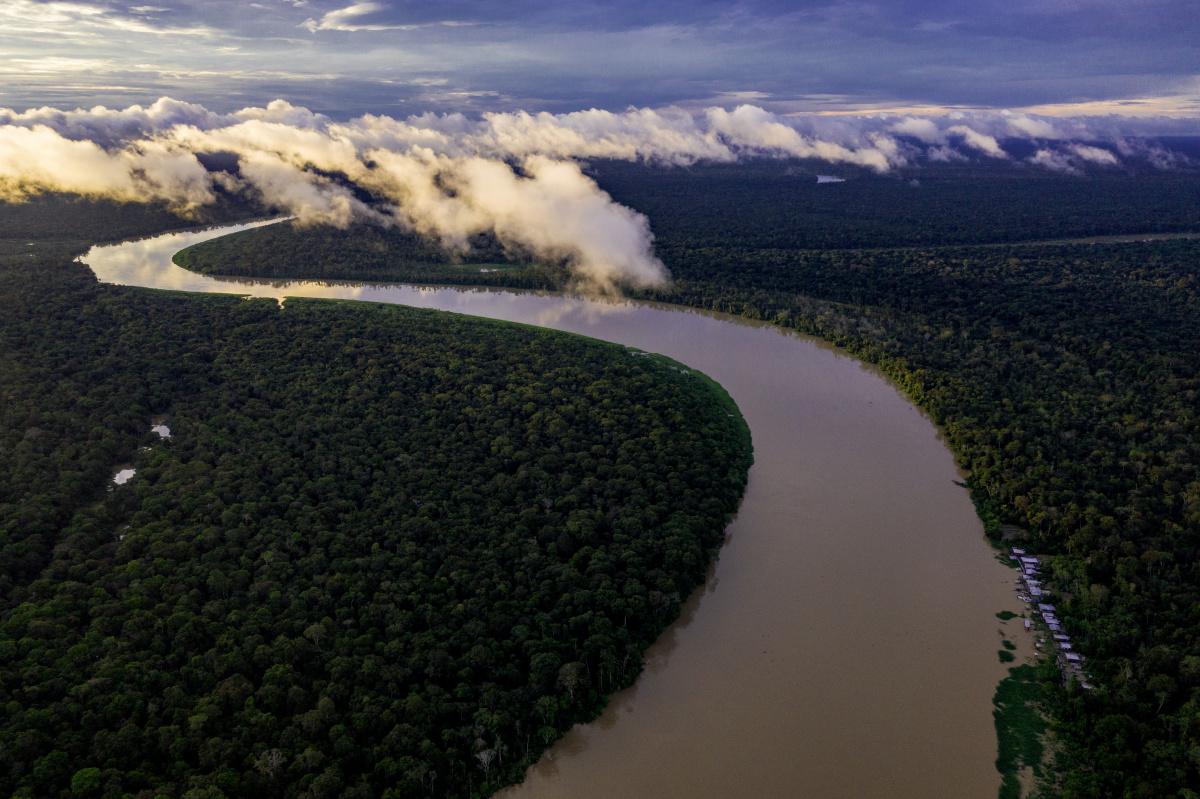 巨大魚ピラルクーを救い、アマゾンの地域社会を助ける水産生態学者。