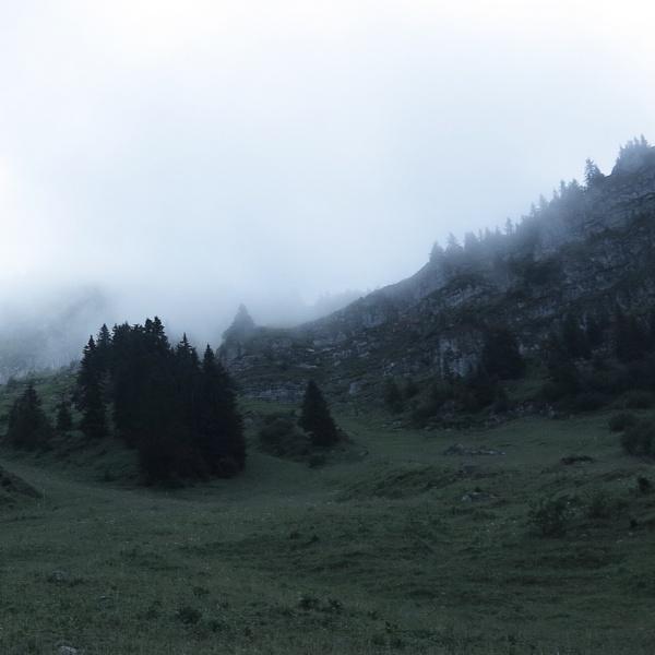 風景を通して見えてくるスイスの感性。