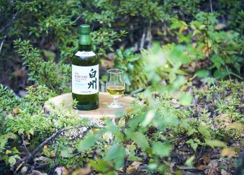 森に囲まれた白州蒸溜所を訪ねて、ウイスキーづくりの継承と革新の歴史を知る。
