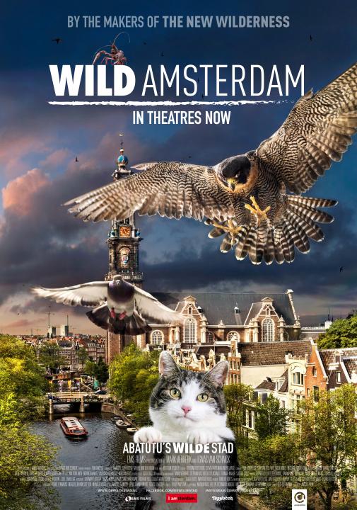 アムステルダムの動物ライフを描く、ネコ目線のドキュメンタリー