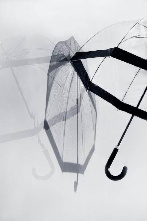 イギリス女王も愛用する高級ビニール傘「フルトン」から、クールなメンズが日本限定で新登場!