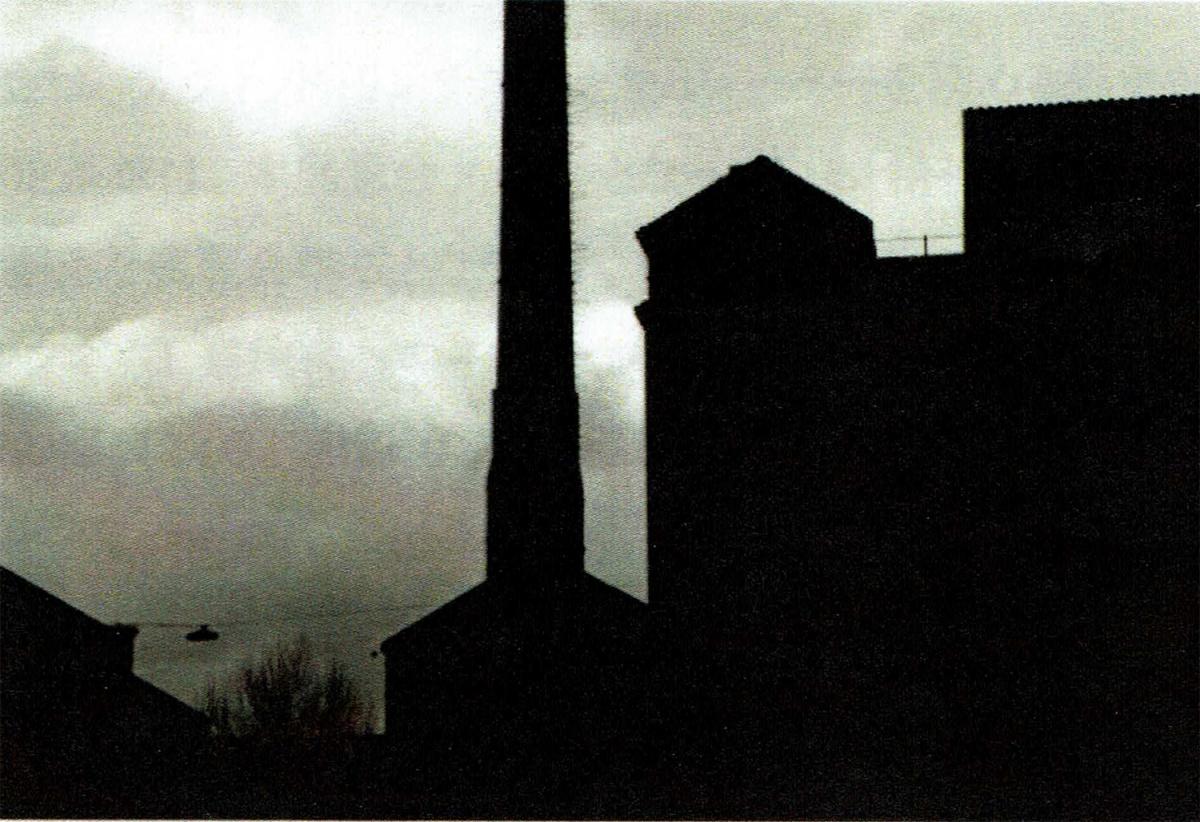 新生GYRE GALLERYのリニューアル第1弾は、『デヴィッド・リンチ_精神的辺境の帝国』展。