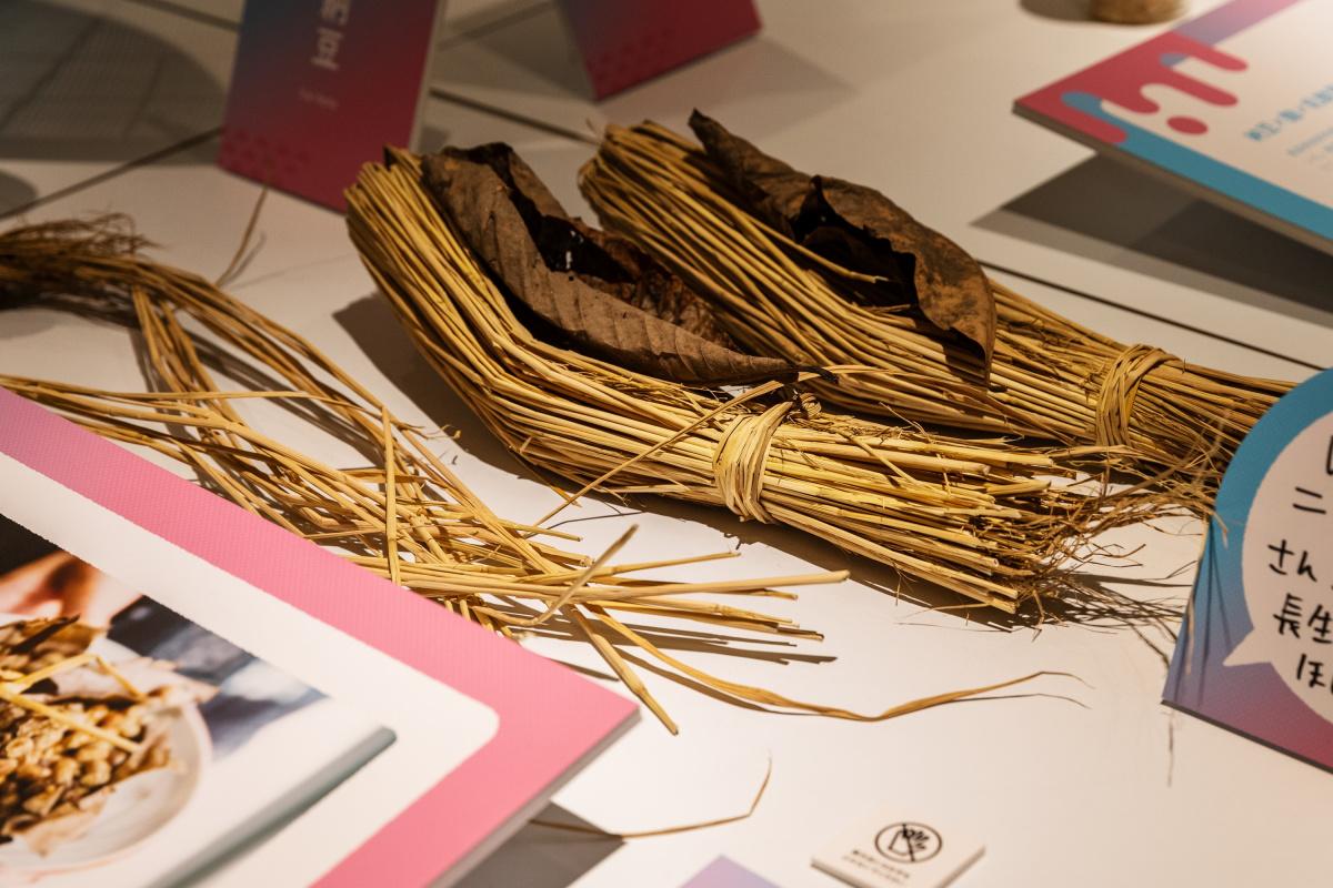 """いま注目の""""発酵ツーリズム""""を体験、 47都道府県のディープな食文化が集う展覧会へ。"""