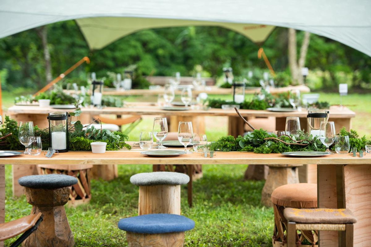 スペシャルイベントで、国産葉たばこの収穫とプレミアムなバーベキュー料理を体験。
