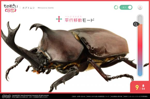 カブトムシをクルクル回して観察!? 「チームラボ」が手がけたインタラクティブ図鑑が話題です!