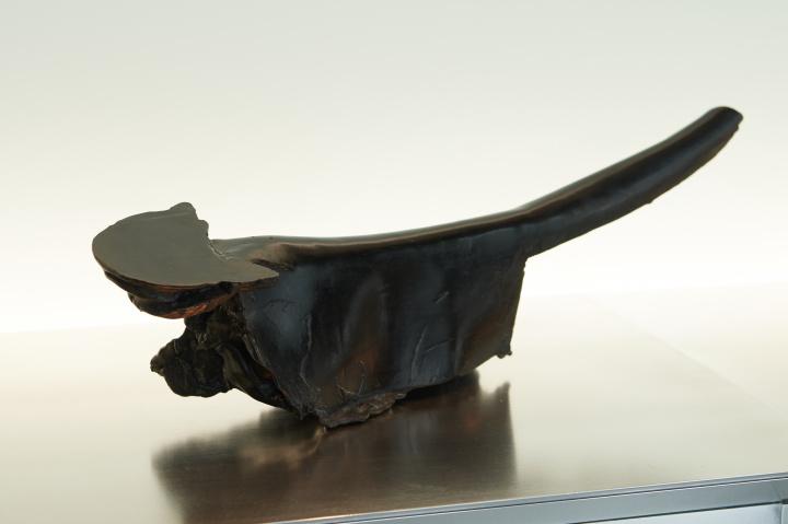 粘土ではなくチョコレートでつくる!? 奇才ショコラティエの彫刻の世界へ。
