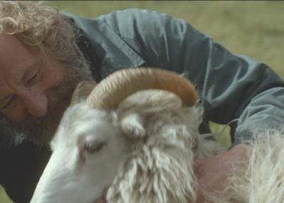 週末のシネマ案内:美しく厳しいアイスランドの自然が物語に深みを与える、『ひつじ村の兄弟』