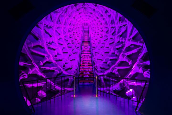 岡本太郎の『太陽の塔』がいま甦る! 48年ぶりに公開される塔の脈打つ内部を目撃せよ。
