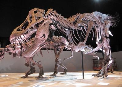 この夏、幕張メッセに日本恐竜展史上最大の『ギガ恐竜展2017-地球絶対王者のなぞ』がやって来る!