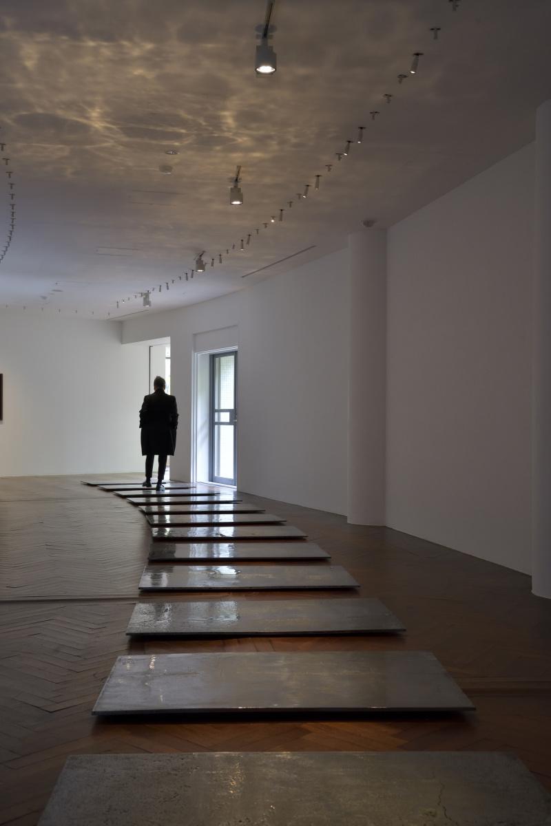 朝鮮半島の非武装地帯の平和を考える、原美術館『The Nature Rules 自然国家:Dreaming of Earth Project』展。
