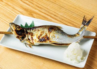 """「津本式 究極の血抜き」を施した、""""美味い魚""""が食べられる店はこの3軒だ。"""