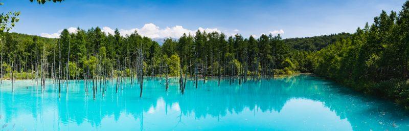 北海道富良野青い池