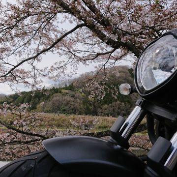 HIROMI☆さんが投稿したバイクライフ