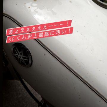 ふかまいさんが投稿した愛車情報(SR400)