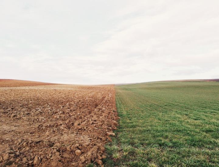 farmland_801817_1920
