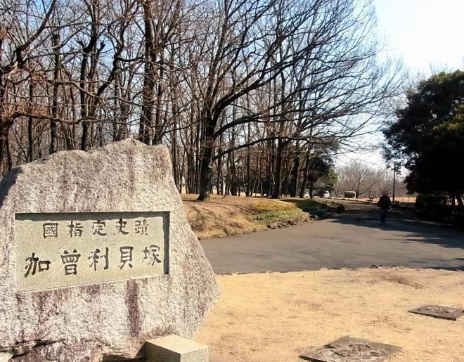 加曽利貝塚=2012年2月17日、千葉市:出典・朝日新聞