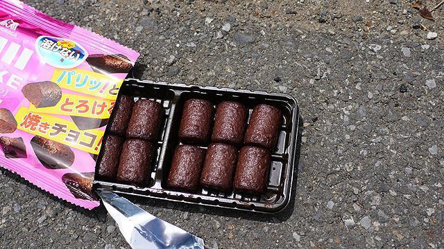 溶けないチョコは本当に溶けないのか?