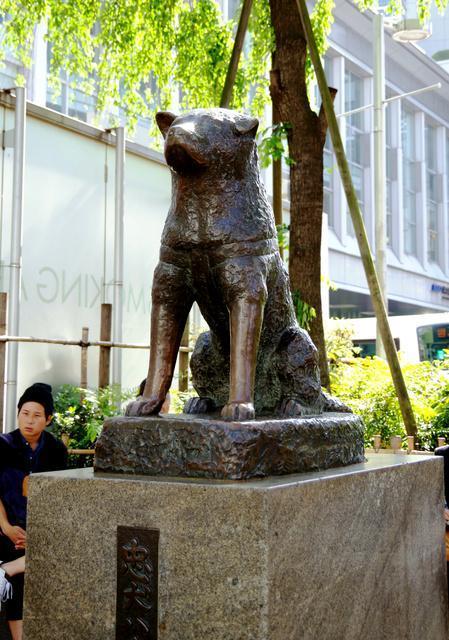 JR渋谷駅前にある忠犬ハチ公の銅像=東京都渋谷区
