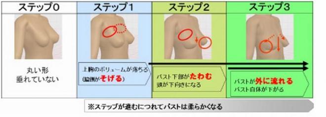 胸は3段階で変化する
