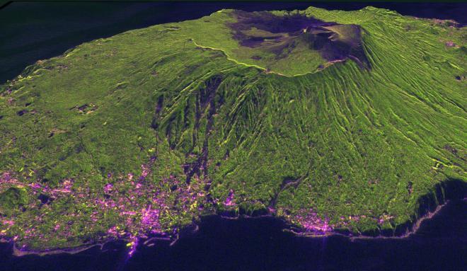 だいち2号が観測したデータから作製した伊豆大島の画像。緑色で着色した部分が植生、ピンク色の部分が市街地を示す。2013年10月の大雨による土砂崩れの跡が黒っぽく筋状に見える=宇宙航空研究開発機構提供