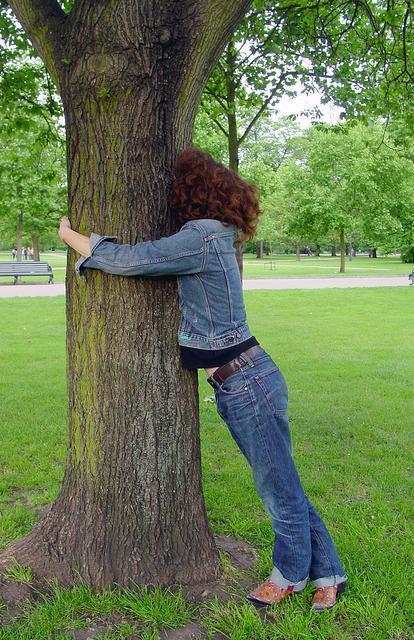 亡くなったおばあちゃんの遺伝子が入った木なら、「墓地」で木に抱きつく人も?