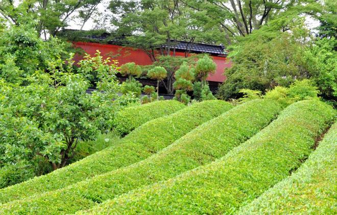 映画の中で登場した赤い屋根の家=奈良市田原地区