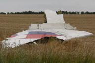 墜落したマレーシア航空機と見られる残骸の一部。ウクライナのドネツク州グラボボ村付近