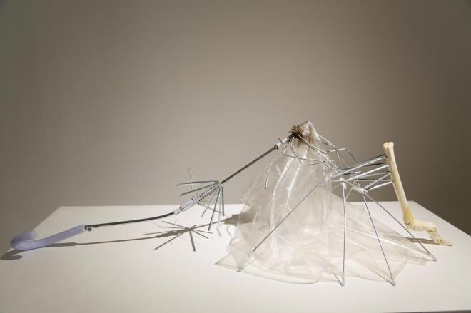 松田修 「スタンディング・アゲイン(骨とホネ)」2012 傘、草食動物の骨 Photo: Yoko Asakai