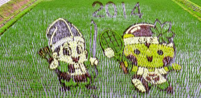田んぼに描かれた「与一くん」(左)と「とちまるくん」=那須塩原市西遅沢