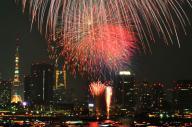 2013年の東京湾大華火祭で、夜空を彩る花火