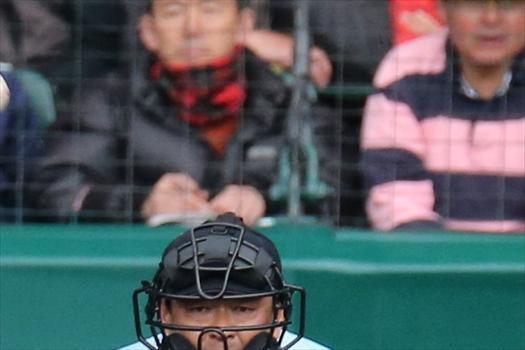 八戸学院光星―横浜戦のラガーさん=2014年3月27日