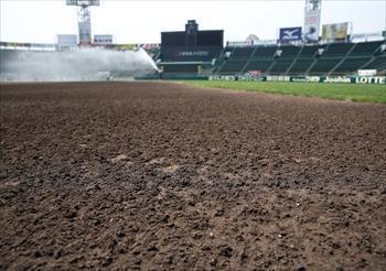 グラウンド整備で水を含み、濃い茶色になった甲子園球場の土=2013年6月5日、兵庫県西宮市