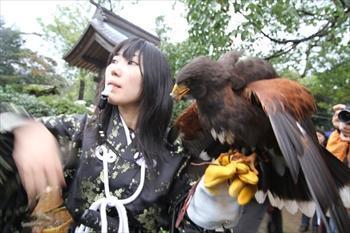 相棒のタカを空に放つ高校生鷹匠の石橋美里さん=2011年11月23日