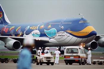 「くじら」が空を飛ぶと評判になったマリンジャンボ=1993年9月、羽田空港で