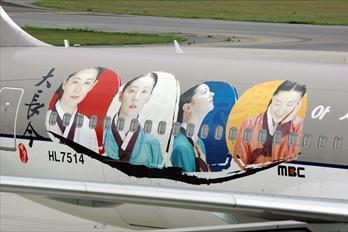 様々な表情のチャングムが描かれた特別塗装機=2006年5月11日、三原市の広島空港で